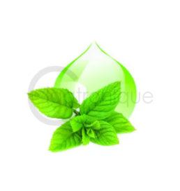 E liquide menthe chlorophylle lorliquide