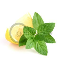 Arôme citron menthe