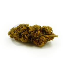 Fleur de CBD orange bud